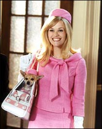 in her star-making film legally blonde, reese witherspoon famously shared the screen with a pink-clad chihuahua named bruiser.