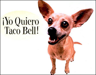 the taco bell chihuahua