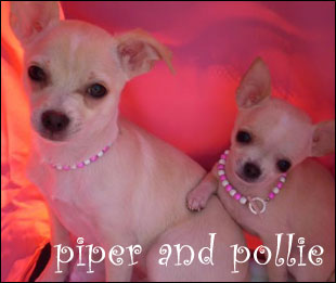 piper and pollie