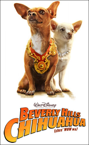 cool fun wallpaper. get YOUR desktop beverly hills chihuahua the movie wallpaper here!