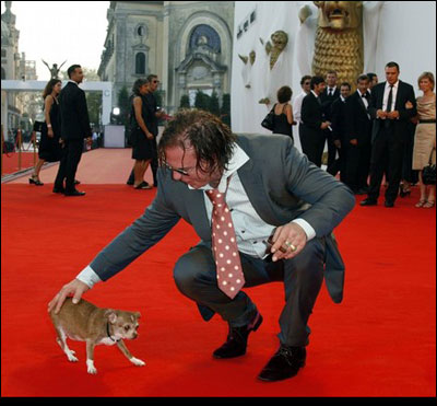 mickey rourke on the red carpet with his chihuahua loki at the venice film festival