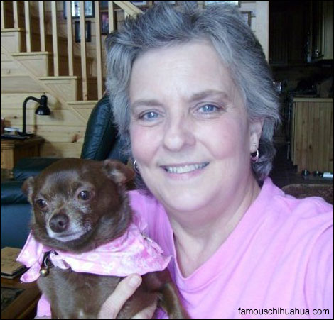 lucy the chihuahua with her mom linda, a breast cancer survivor