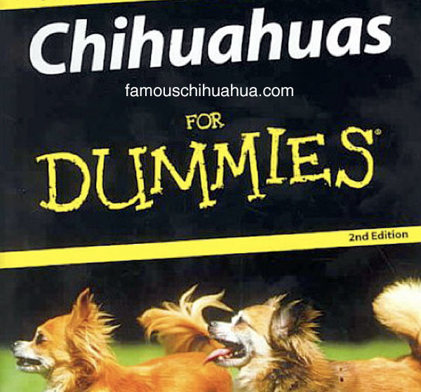 shop for chihuahua books! learn how to care for your chihuahua!