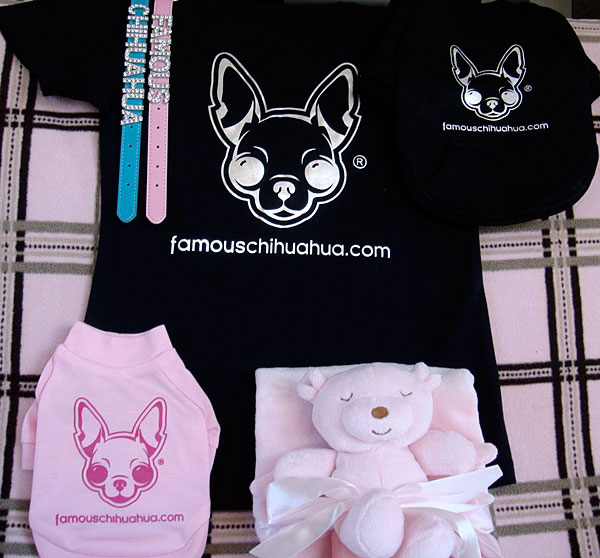 order a famous chihuahua dog t-shirt and make YOUR chihuahua famous!