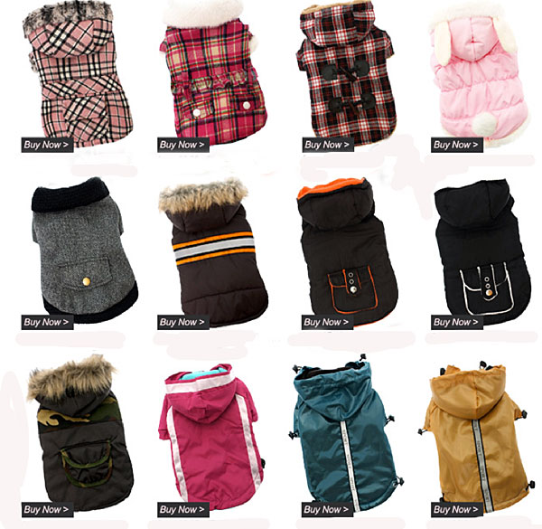 shop for winter dog coats!