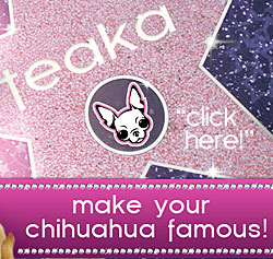 click here to submit your chihuahua picture!