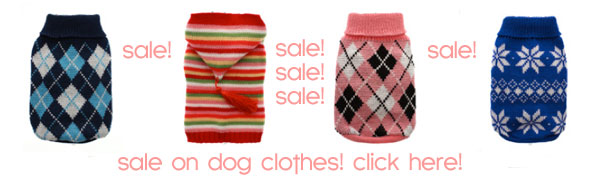 sale on dog clothes! click here!