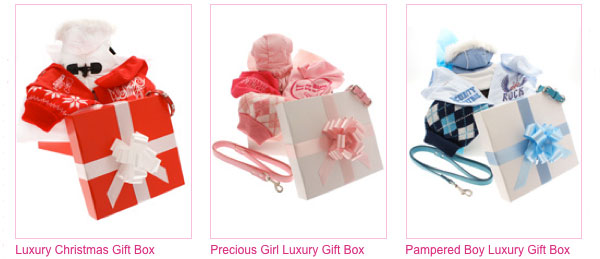luxury gift box for dogs