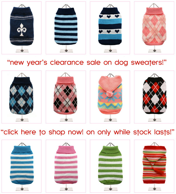 clearance sale on dog sweaters!
