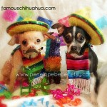 chihuahuas with mustaches