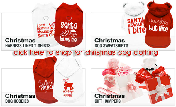 christmas dog clothing and accessories