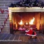santa in front of fireplace