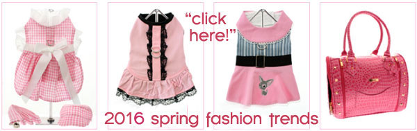 spring fashions chihuahua clothes