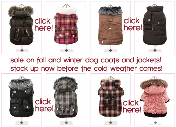 fall winter sale dog coats jackets