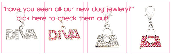 dog jewlery