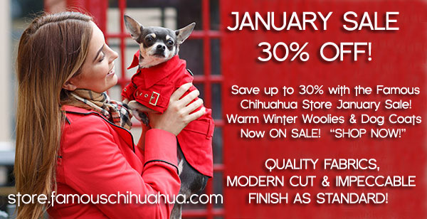 january sale chihauhua clothes dog sweaters coats