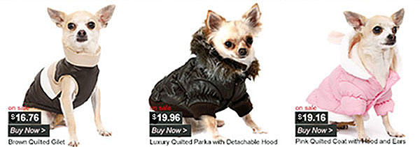 sale on dog coats
