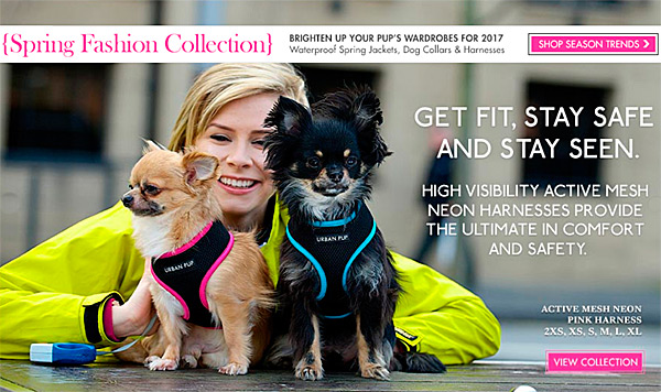 Spring Fashion Collection! Active Mesh Dog Harnesses!