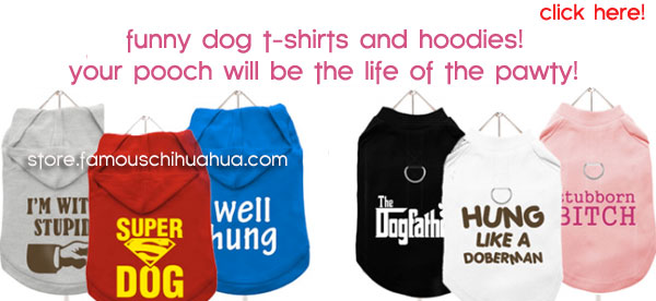 custom funny dog shirts