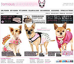 famous chihuahua store
