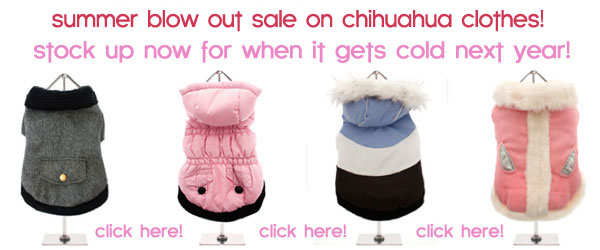 summer clearance sale chihuahua clothes