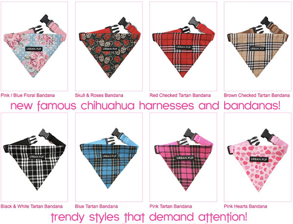 New pattern dog harnesses and bandanas famous chihuahua for Dog bandana template