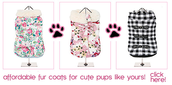 affordable fur dog coats