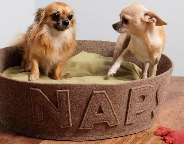 naps design dog beds