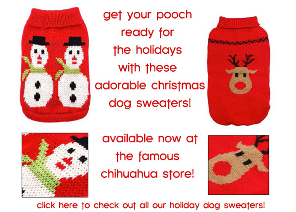 holiday dog sweaters outfits