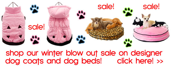 winter sale dog coats dog beds