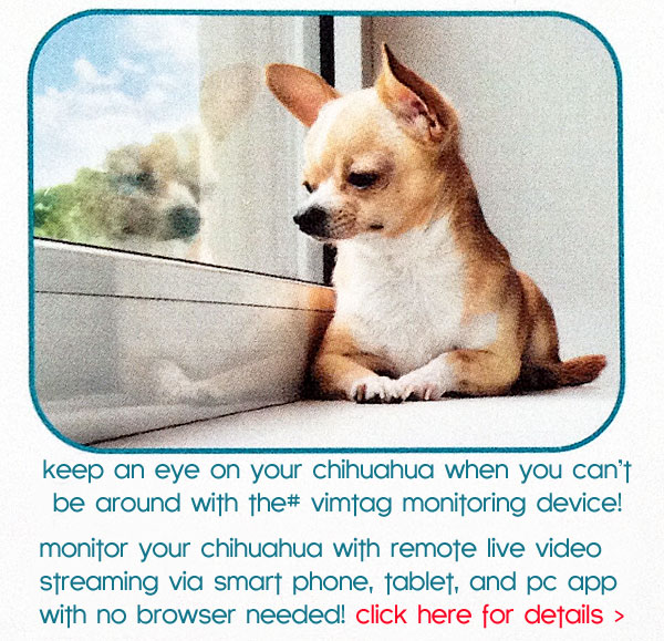 vimtag pet monitor device