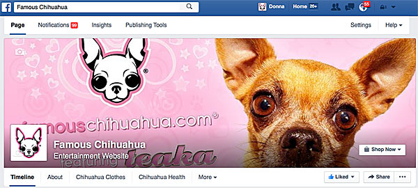 famous chihuahua facebook page