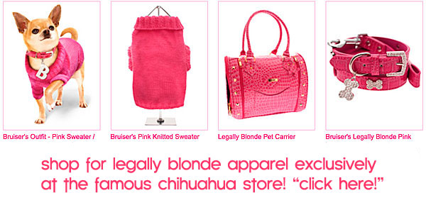 legally blonde dog clothes and accessories