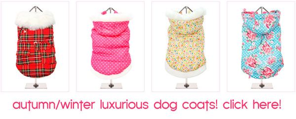 luxury dog coats