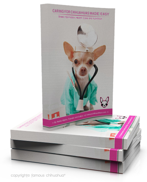 book how to care for your chihuahua