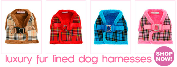 fur dog harnesses