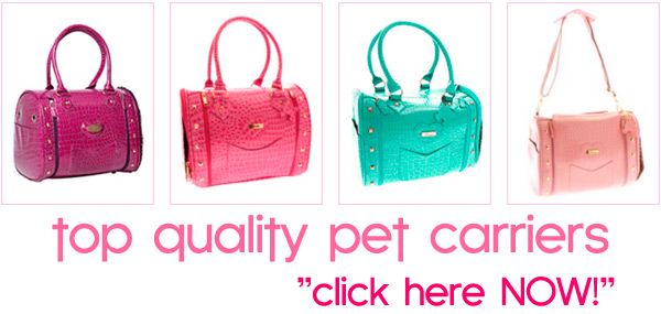 designer dog carriers