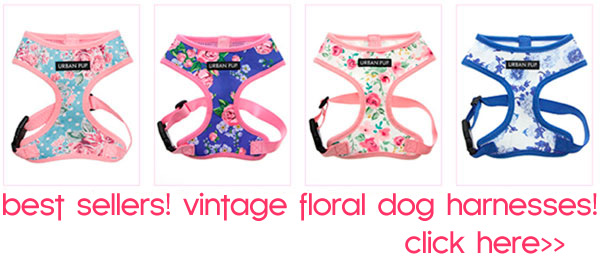 vintage floral dog harnesses