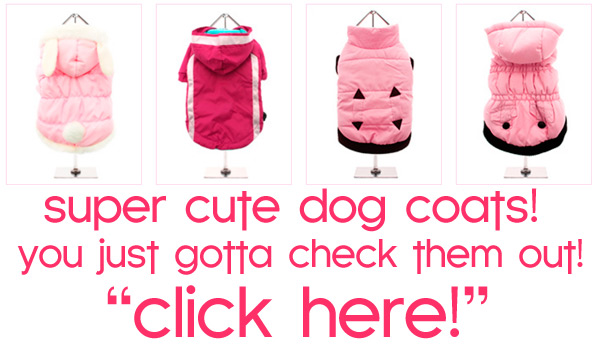 fall winter dog coats