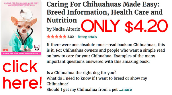 chihuahua book on sale