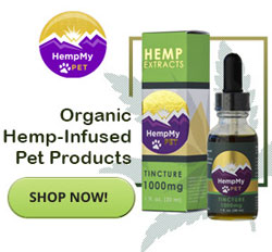 shop for cbd oil chihuahua dogs