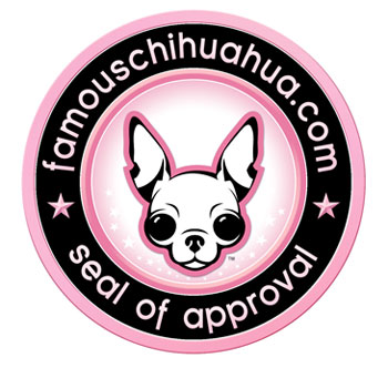 is your site worthy of a famous chihuahua seal of approval?