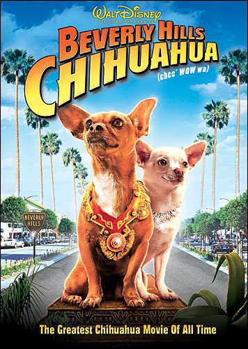 beverly hills chihuahua now available on dvd