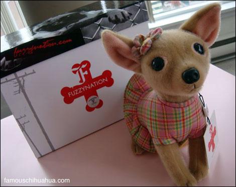 plush chihuahua toy