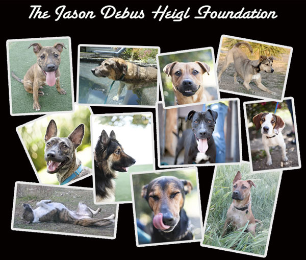 jason debus heigl foundation founded by nancy and katherine heigl