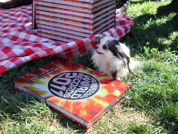 tiny boo-boo poses pretty next to the 2011 world guinness book she appears in