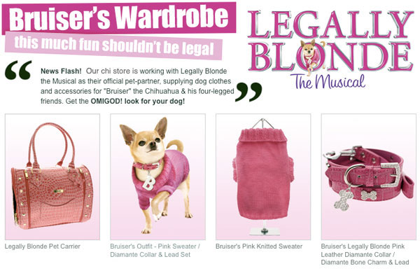 princess your chihuahua up in bruiser's legally blonde wardrobe now available at the famous chihuahua online store!