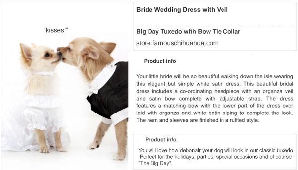 chihuahua bride and groom! kiss kiss!