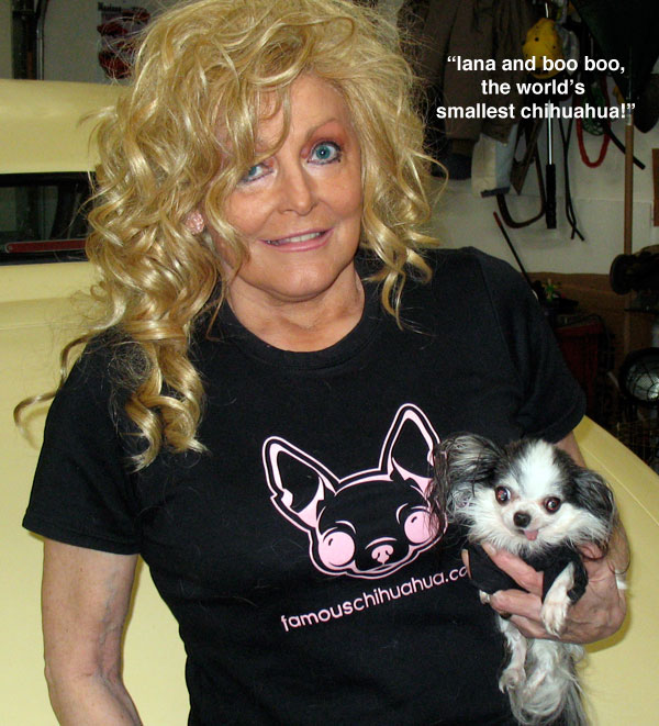 lana and boo boo strike a pose in their adorable mommy and me famous chihuahua t-shirt set!