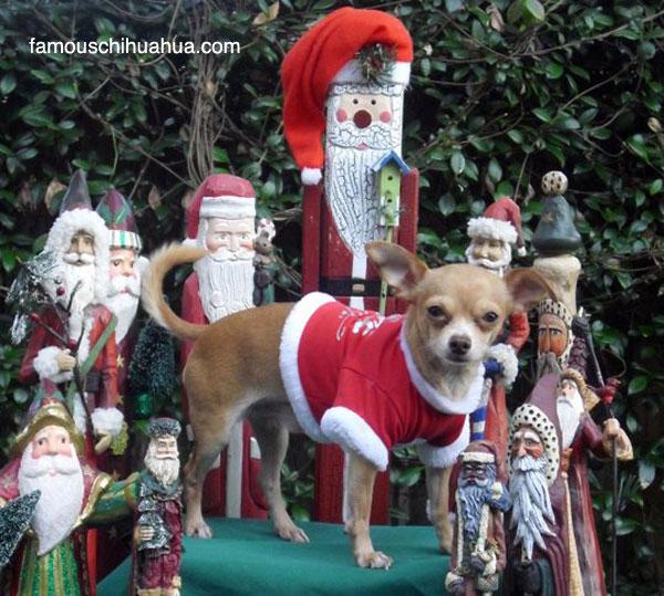 feliz navidad homies